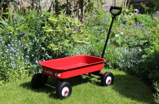 Personalised pull along metal cart